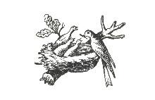 Primer logo Nestlé 1868